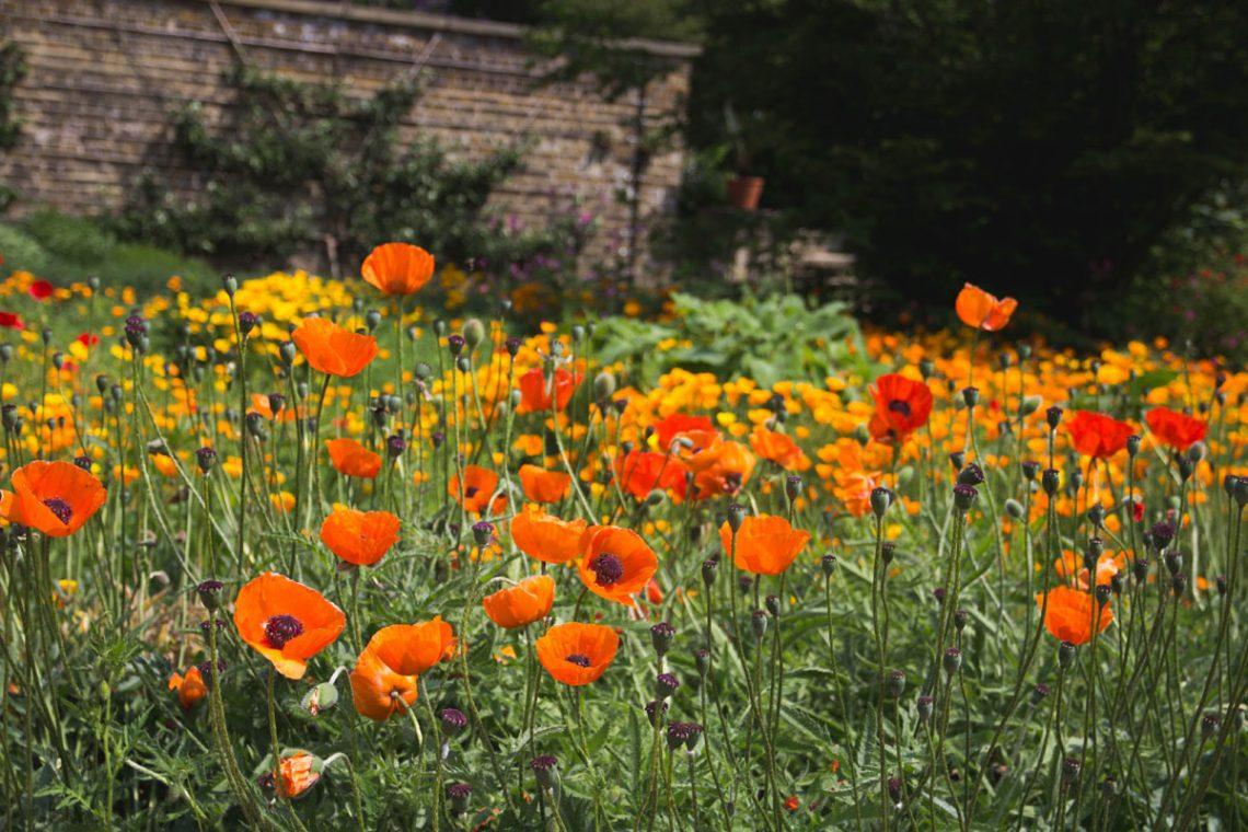 Gartenmöbel für draußen