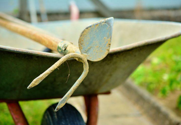 Checkliste für die Gartenarbeit im Herbst